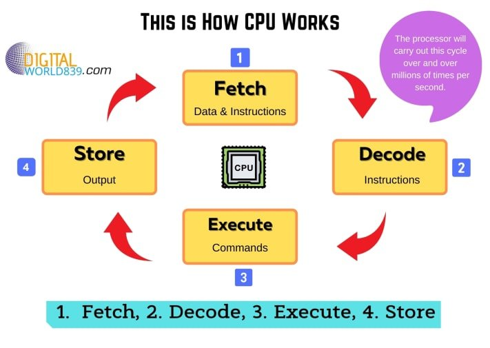 How CPU works